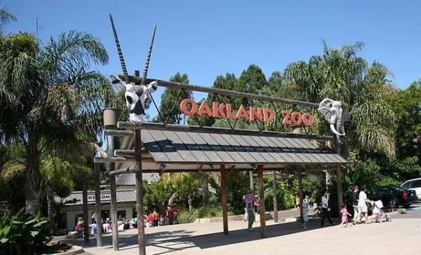 Amerikaanse dierentuin vaccineert dieren